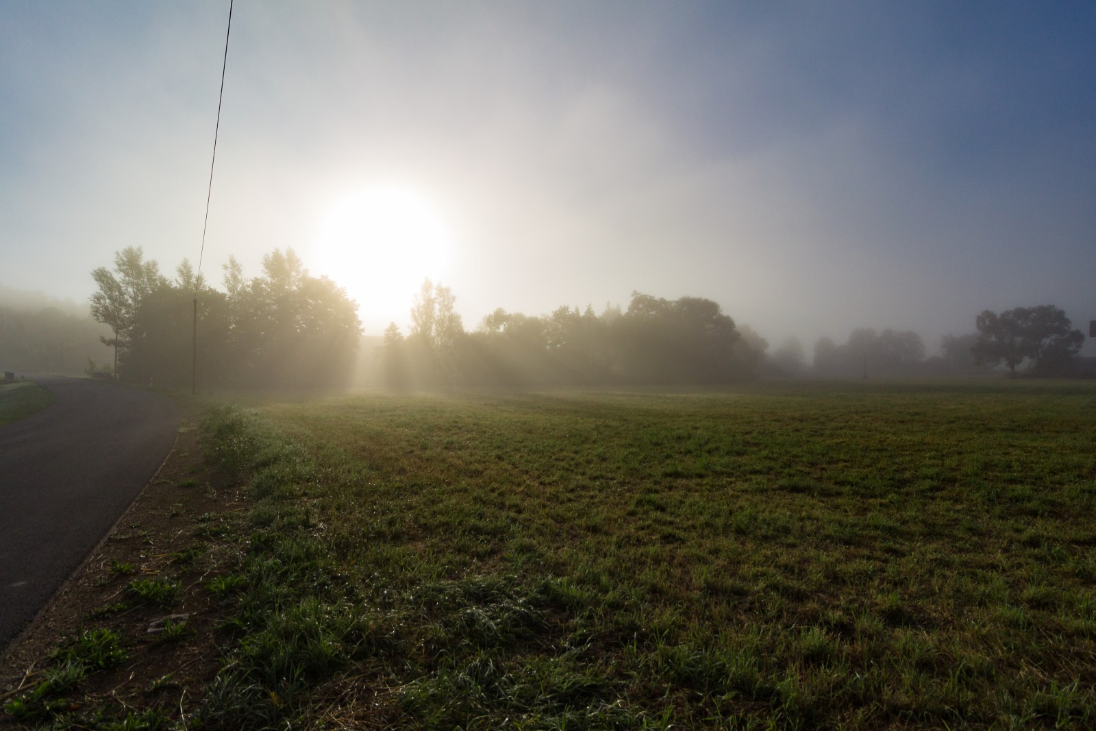 Wald Wiese Nebel