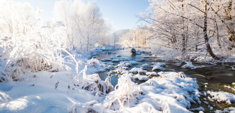 fränkische schweiz winter wiesent